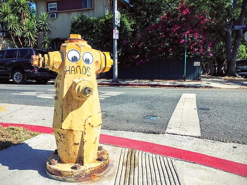 Fun in the roads. #bigcity #usa #travel #explore #California #LosAngeles #walk #funny #face #eyes #hydrant | by Chris Spiegl