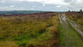 Stanton Moor Walk | by BlackDaffodil