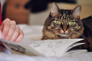Ada & Sketchbook | by flossyflotsam