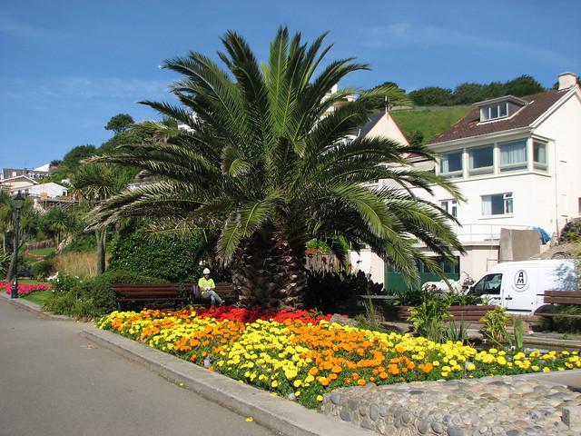 Gardens at Gorey