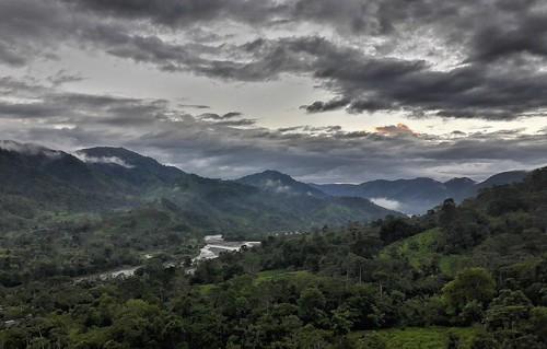 permatree ecuador valle de las luciérnagas