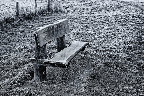 Frozen Bench Fence Friday
