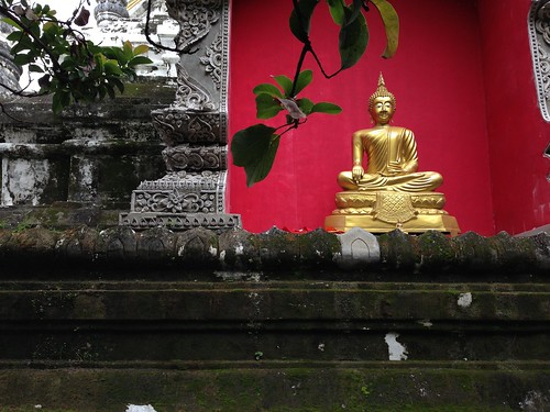Forest temple, Wat U-Mong, Chiang Mai | by juliacsmith