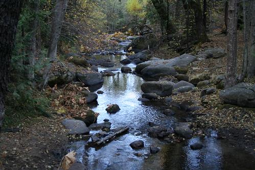 california travel autumn fall creek landscape hiking sierra nationalforest