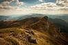 KaizenLab_landscape-by-david-marcu