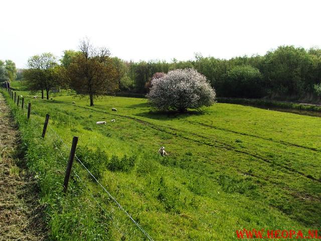 15-05-2010  Hoornaar 41 Km (27)