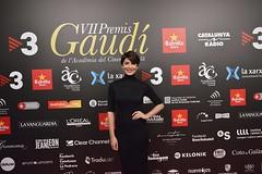 Catifa vermella VII Premis Gaudí (45)