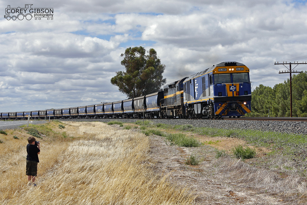 Young Daniel captures GL109 & C501 with a load grain train from Nhill near Pimpinio by Corey Gibson