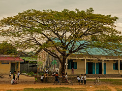 School Days - Children playing under a tree in Sihanoukville, Cambodia