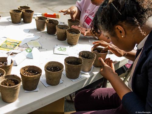 Healing Herb Garden Workday - Erasmus High School Visit II   by Sustainable Flatbush