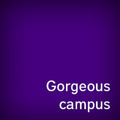 gorgeous_campus