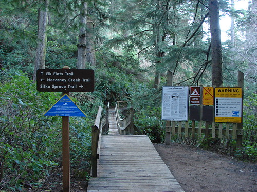 Suspension bridge over Necarney Creek