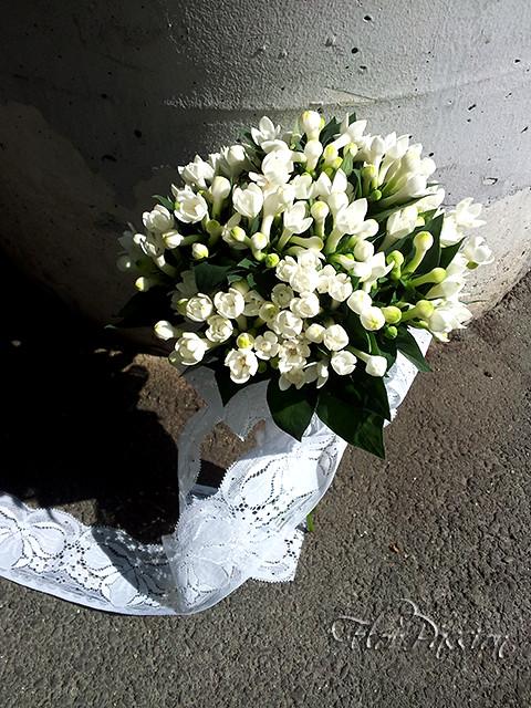 Bouvardia Bouquet Sposa.Bouquet Da Sposa Con Bouvardia Bianca E Nastro In Pizzo Flickr