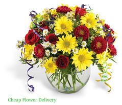 Cheap Flowers ONLINE