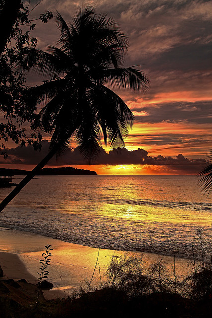 Tropical Sunset 50/52 by Danny Buxton