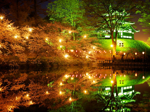 longexposure travel light vacation holiday plant flower tree tourism nature water beautiful japan night dark japanese pond asia pretty view culture illumination nobody nighttime 桜 cherryblossom 日本 flowering sakura moat hanami temporal blooming 花見 cherryblossomviewing nolens japanesecastle 新潟県 niigataprefecture 高田城 上越市 高田公園 takadacastle joetsucity springapril2013 jōetsushi takadakoencherryblossomfestival jōetsushi