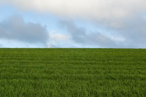 sky field grass clouds 35mm nikon unitedkingdom explore northernireland 365 nikkor dropped ballymena explored d3200 ahoghill