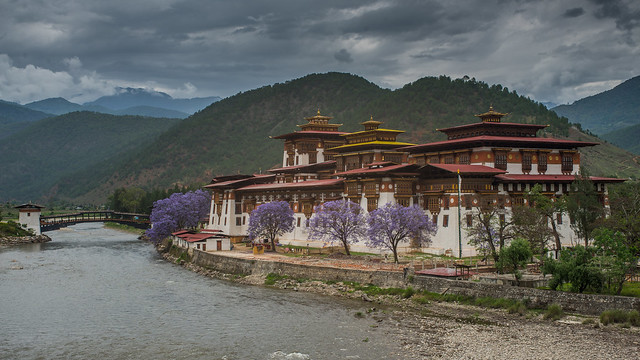 Punakha Dzong (eXplored!)