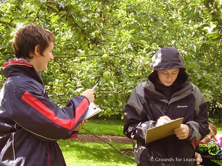 School Orchard13GfLScotland