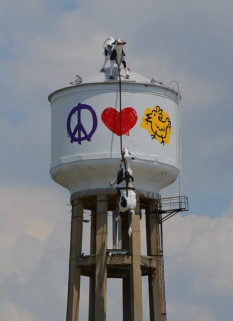 Peace, Love, Chicken
