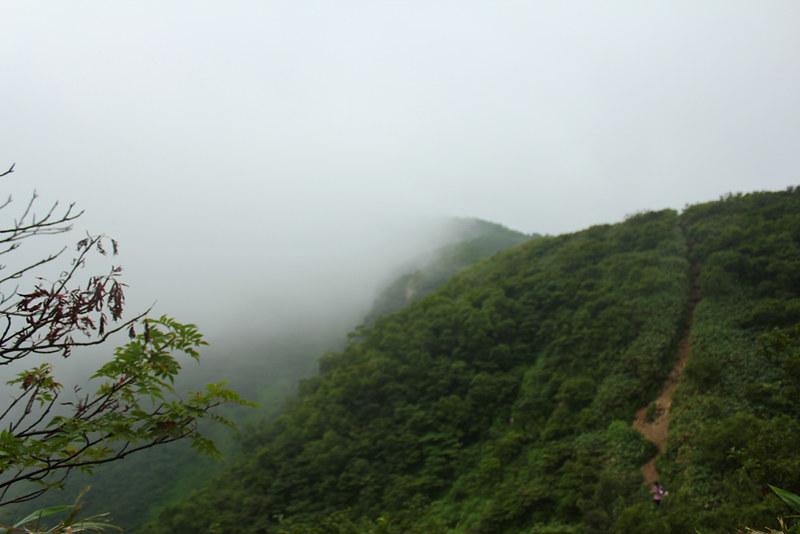 荒島岳_41
