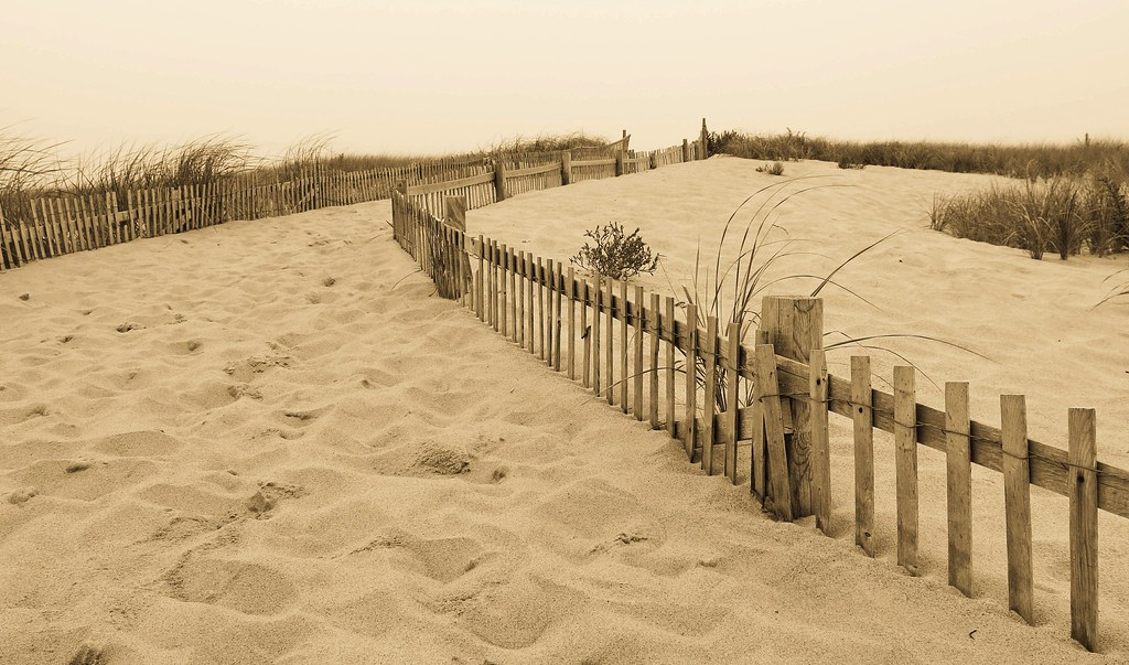 Buried Fence Lines
