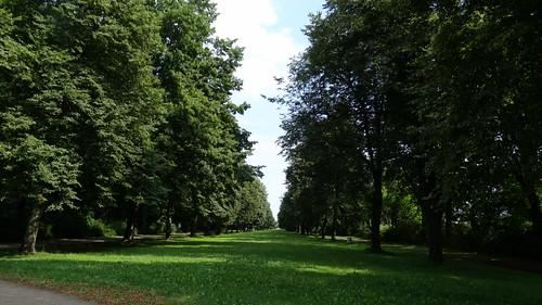 Das Paradies ruht, und die Weide schimmert, ihr Schatten flimmert in seiner Flut, und der Wind weint in den Bäumen wir träumen Grosser Garten, träumen Dresden 0232