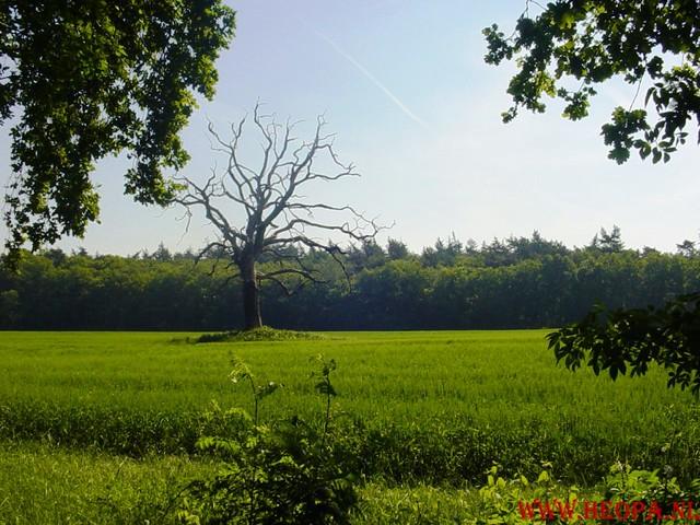 Oud Zuilen      16-06-2006                    40 Km (15)