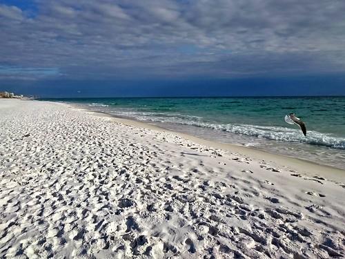 ocean beach gulfofmexico nature beautiful sunshine birds clouds sand florida sony destin whitesand android panhandle beachscape emeraldcoast hendersonbeachstatepark xperia xperiaz3