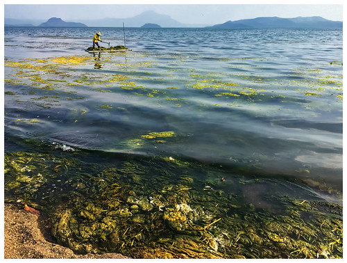 travel lake water landscape volcano garbage weed philippines cleaning rubbish tagaytay taal iphone barangas