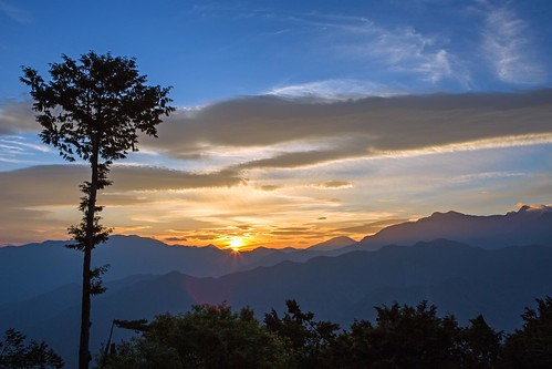 morning sun mountains tree clouds sunrise asia taiwan alishan