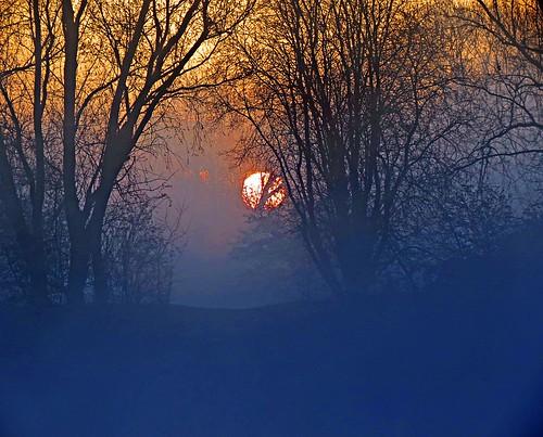 sky mist reflection water silhouette fog sunrise bedford bedfordshire flare felton countrypark lumen priorycountrypark robertfelton fingerslake