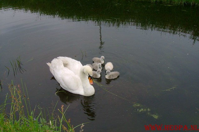 Monnickendam        31-05-2008         40 Km (41)