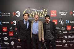 Catifa vermella VII Premis Gaudí (18)