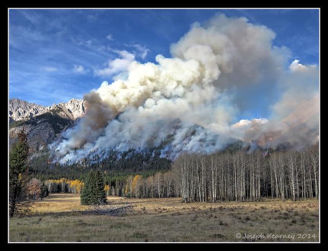 Prescribed Fire Burn (HDR Image)