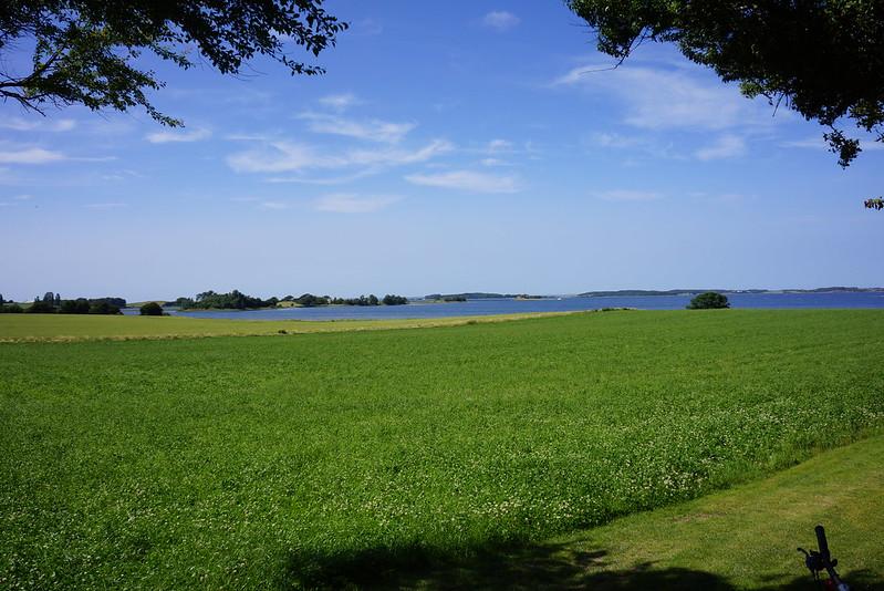 Kaedeby-Haver-2013-07-08 (1)