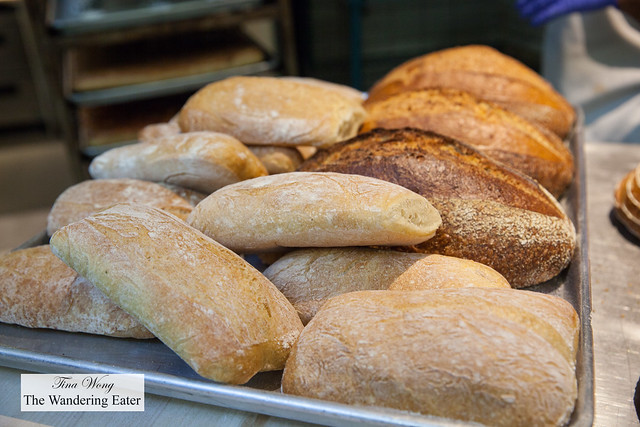 Loaves of ciabatta and Country bread