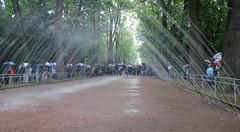 Parc Alexandria