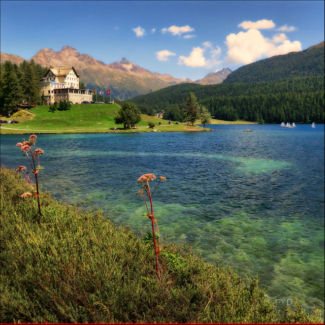 Lago di Sankt Moritz - Lej da San Murezzan