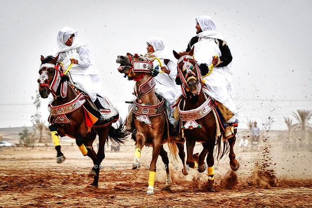 Equestrian .. Sabha
