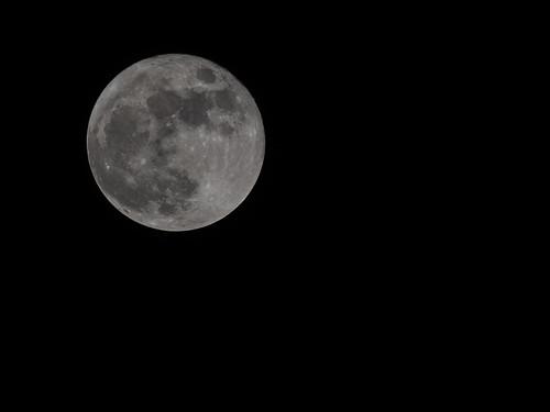Full Moon Nov 17 2013   by staticantics
