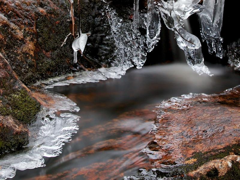 Frostbekken