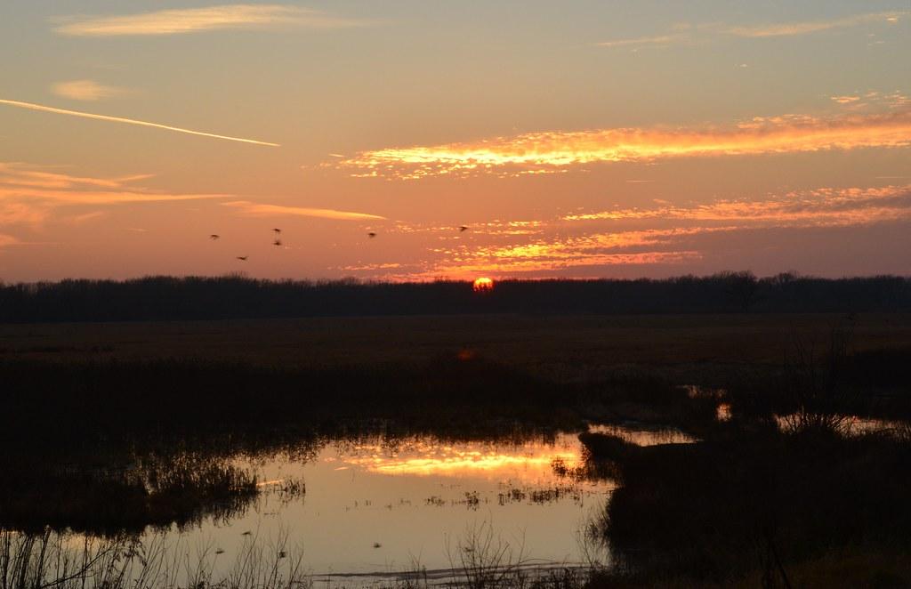 Sunset Nygren Wetlands