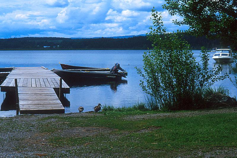 Dragon Lake, Gold Pan City, Quesnel, Cariboo, British Columbia, Canada