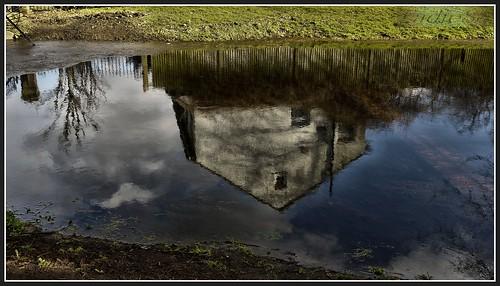 trees nature water reflections surrey thegrotto carshalton floods2014 thegrottocarshaltonsurrey