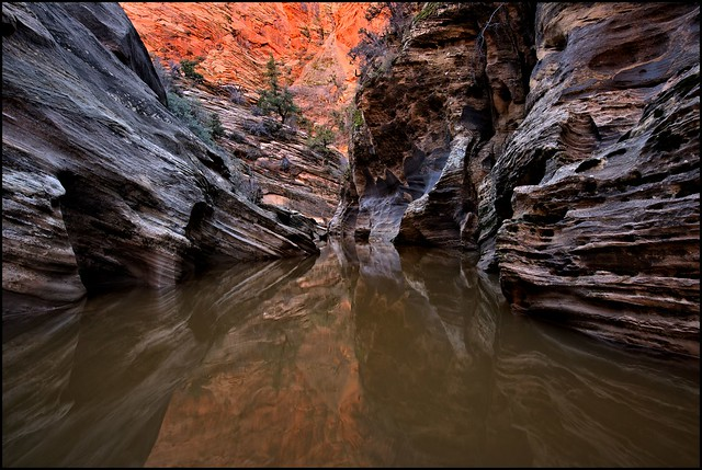 Slot Canyon, Zion National Park