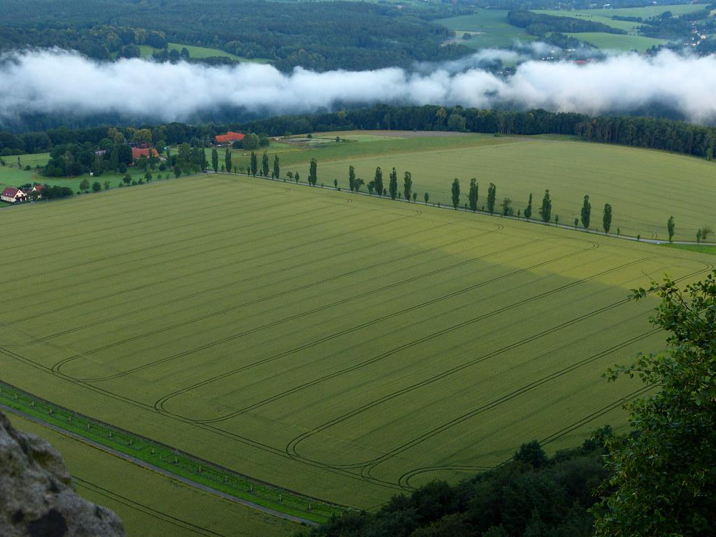 Feld und Nebel