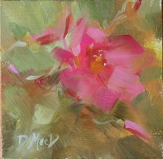 donna macdonald rose 2w