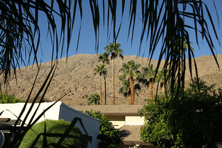 Honeymoon : Palm Springs | by HyperXP.com