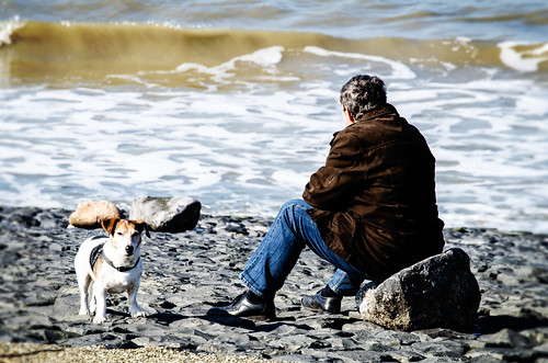 The Man, the Dog and the Sea